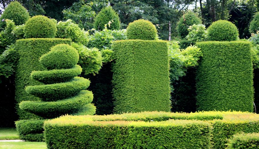 Paysagiste genovese paysages dans la loire 42 cr ation jardin et terrassement for Image jardin paysagiste